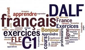 dalf-c1-preparation-delf-bonjourdefrance20